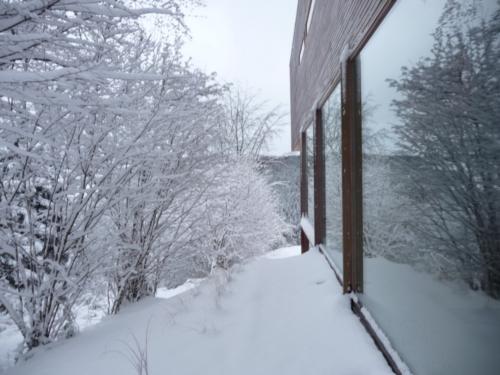 Фасад частного дома лиственница